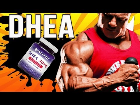 Dhea Dhea How Much To Take