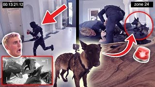 HOW WILL APOLLO REACT TO A BURGLARY?! **PUPPY EXPERIMENT** thumbnail