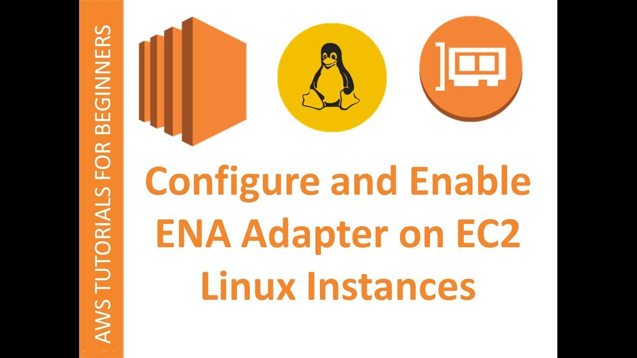 AWS Cloud | EC2 Web Service | Configure and Enable ENA support for Enhanced  Networking on RHEL 6/7