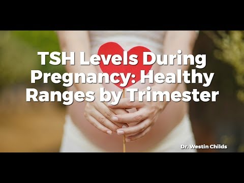 TSH Levels During Pregnancy: Healthy Ranges by Trimester