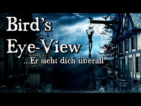 Bird's Eye-View:  Er sieht dich überall (Hörbuch deutsch)