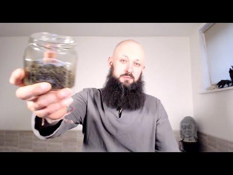 Вопрос: Гиностемма пятилистная как выращивать и ухаживать за ней?