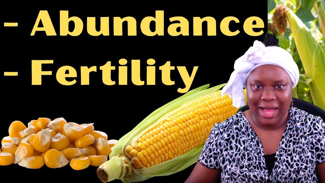 Yoruba Incantation (O̩fò̩) 6: Ìhòhò Làgbàdo Ń Wo̩ Ebè | Abundance and Fertility