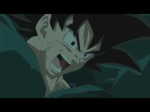 Goku Vs Beerus I Will Not Let You Destroy My World