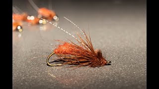 October Caddis Pupa - Wet Fly