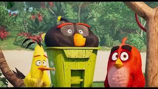THE ANGRY BIRDS MOVIE 2 | Teaser #1 | Dcine Sóc Trăng