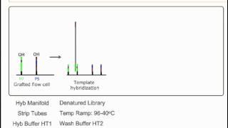 Ga Boot Camp: Illumina -- Cluster Generation (chemistry)