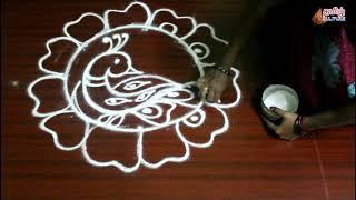 Peacock Rangoli #2 | Rangoli art kolam | Tamil Culture Traditional art videos