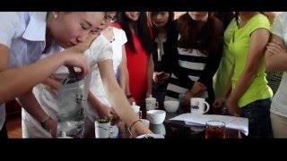Китайский чай оптом от производителя HunanTea.ru