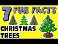 7 FUN FACTS ABOUT CHRISTMAS TREES! FACTS FOR KIDS! Ornaments! Lights! Learning Colors! Decorations!