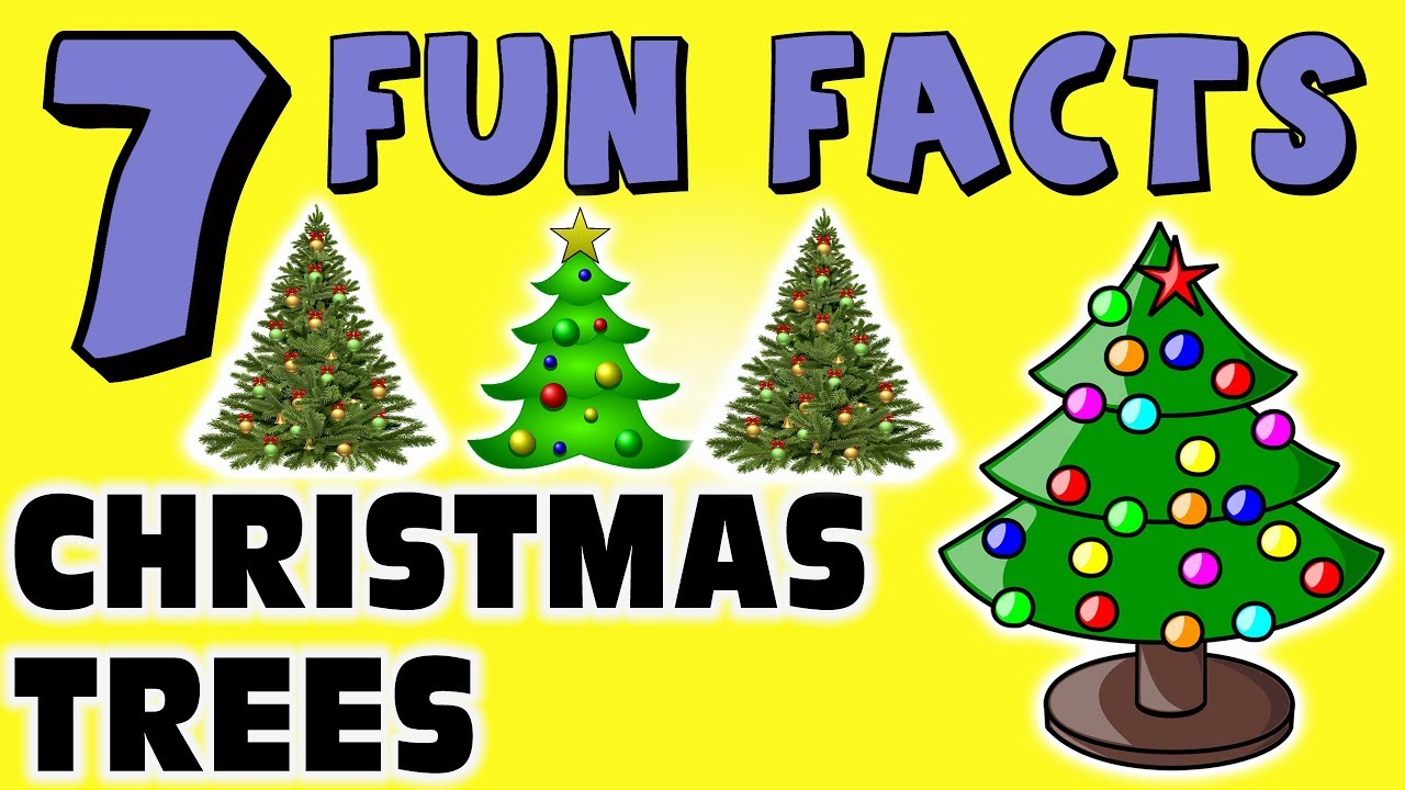 Christmas Fun Facts.7 Fun Facts About Christmas Trees Facts For Kids Ornaments Lights Learning Colors Decorations
