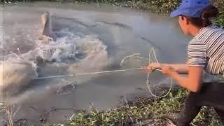 Рыбалка Кастинговой Сетью Лучшие забросы ВОТ ЭТО УЛОВ