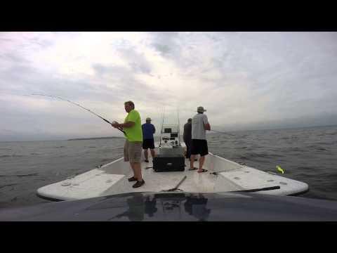 Striper Fishing Lake Livingston
