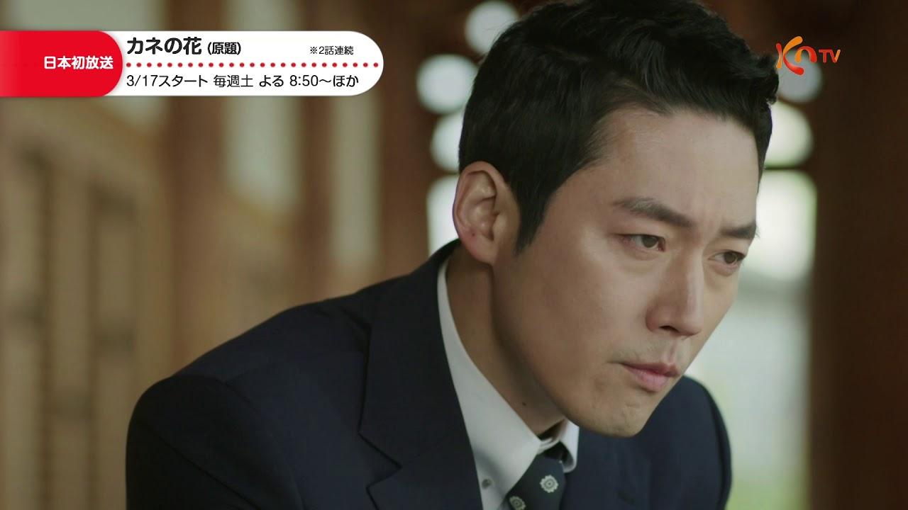 ドロドロ 韓国 ドラマ