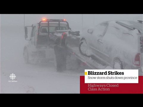 CBC News: New Brunswick at 6:00, Feb. 13, 2017 - Storm Special