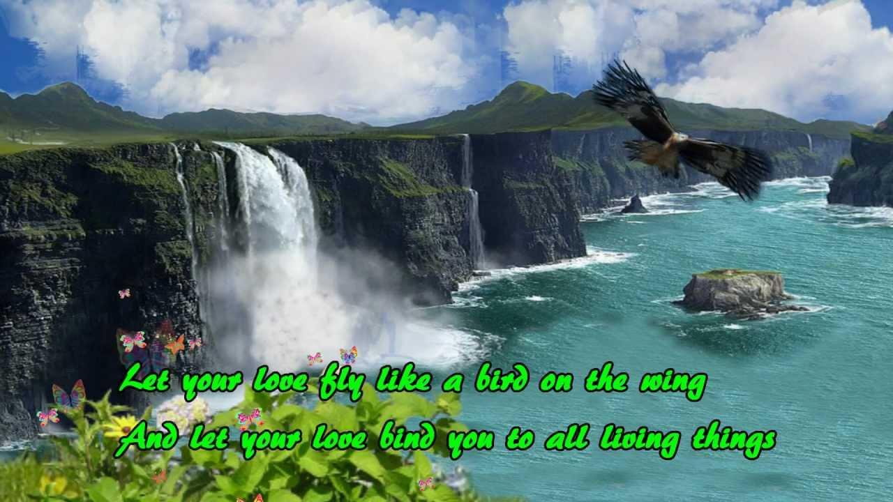 fly high and let me go lyrics
