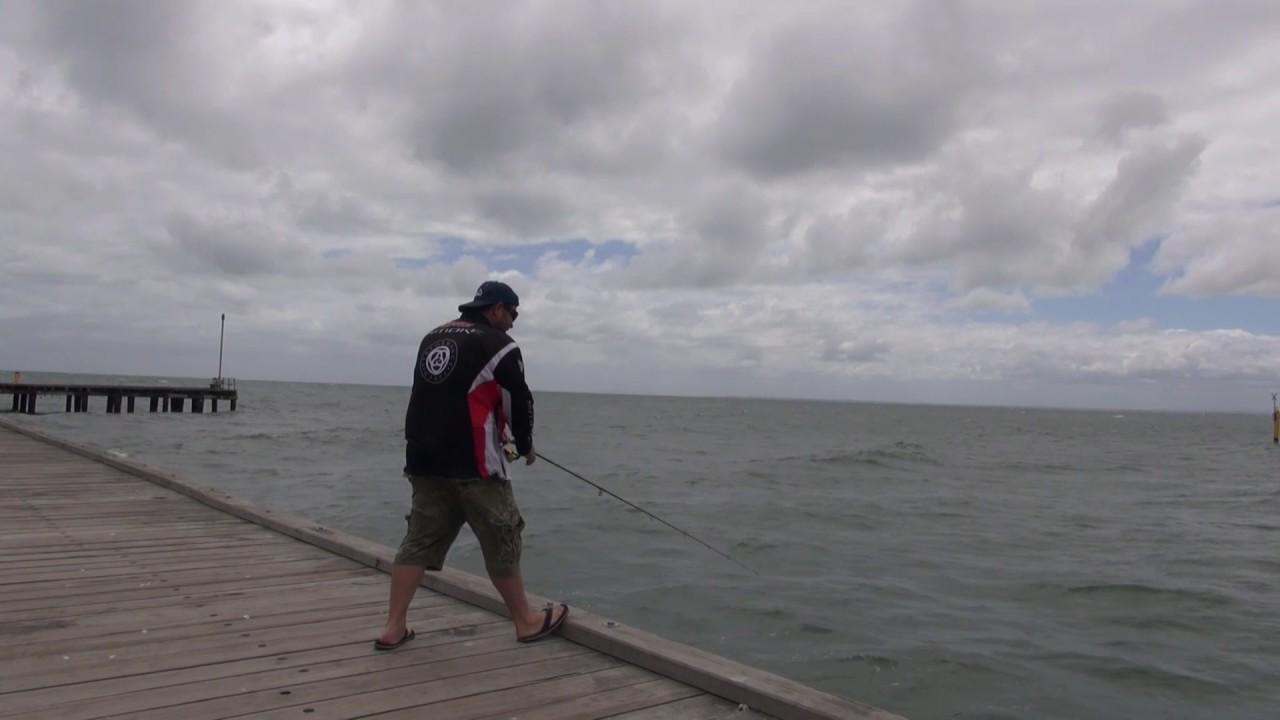 Download Oz Fish TV - Frankston Pier and Westernport Gummies