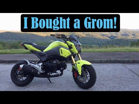 I Bought a Grom! | Smoky Mountain Crawl