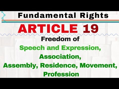 Article 19 of Indian Constitution   Right to Freedom   Fundamental Rights of Indian Constitution