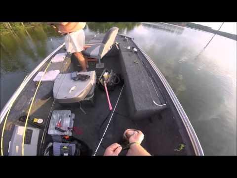 Tiger Bass at Bear Lake