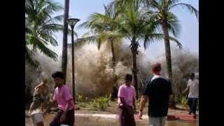 Toàn cảnh trận đại sóng thần Ấn Độ Dương 2004