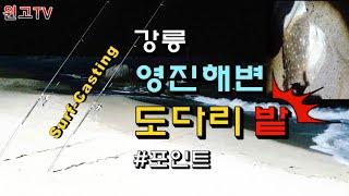 89회 동해안 강릉시 영진해변 생활원투낚시 도다리 대박…