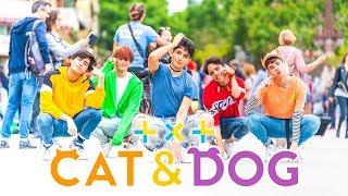 [KPOP IN PUBLIC] TXT (투모로우바이투게더) - Cat & Dog | Dance Cover by RStar (One Shot ver.)