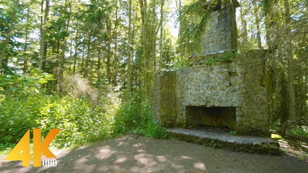 Sunny Day Hike through a Beautiful Forest - 4K Bullitt Fireplace Trail Walking Tour + Relaxing Music