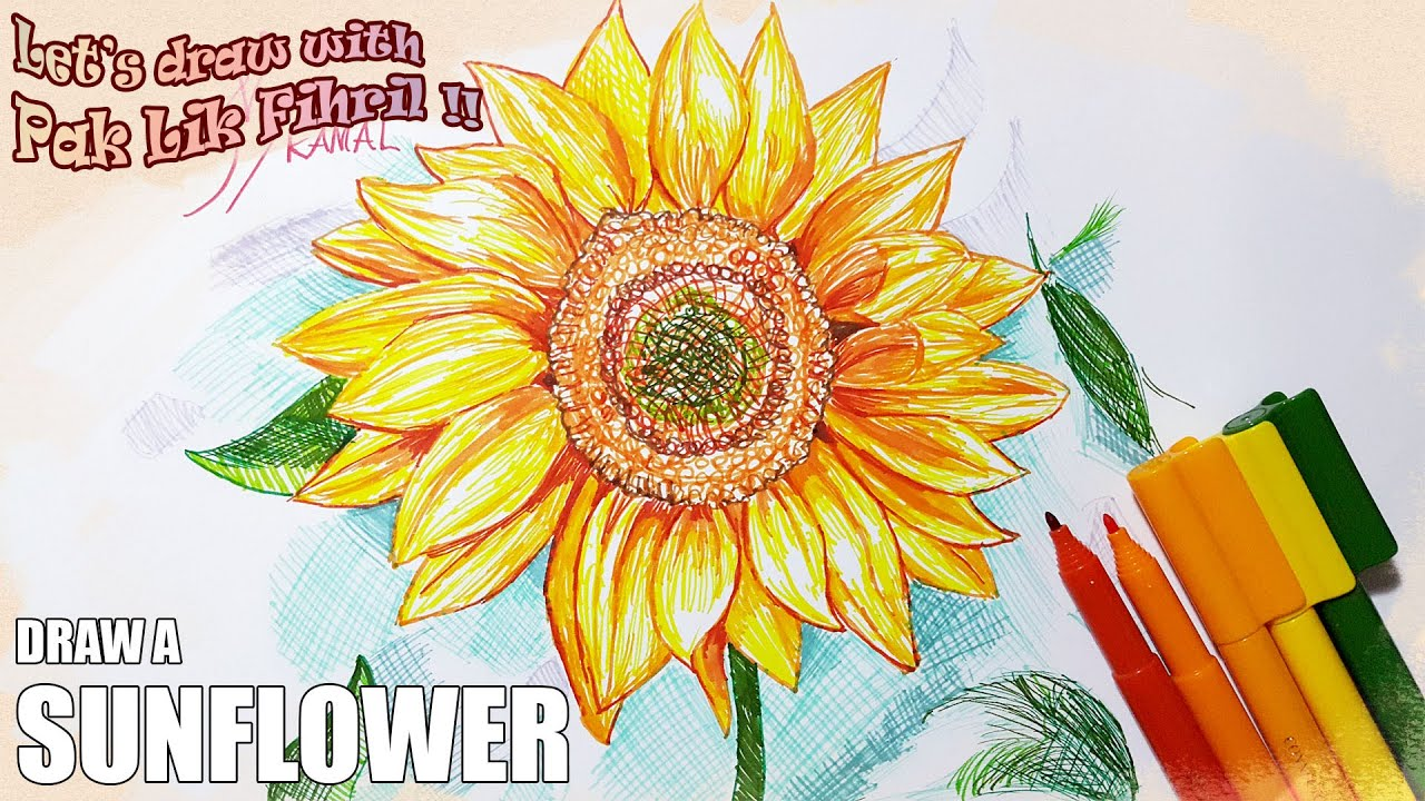 How To Draw A Sunflower Lets Draw With Pak Lik Fihril Episode 6