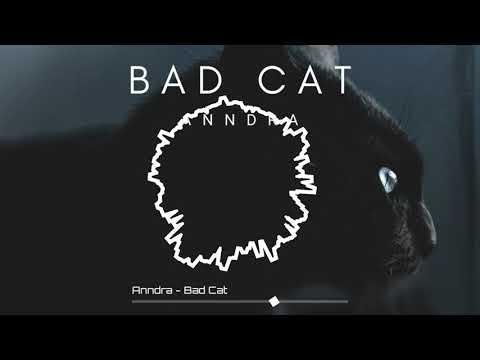 Anndra - Bad Cat (Original Mix) OUT NOW! Psy/House/India/Progressive