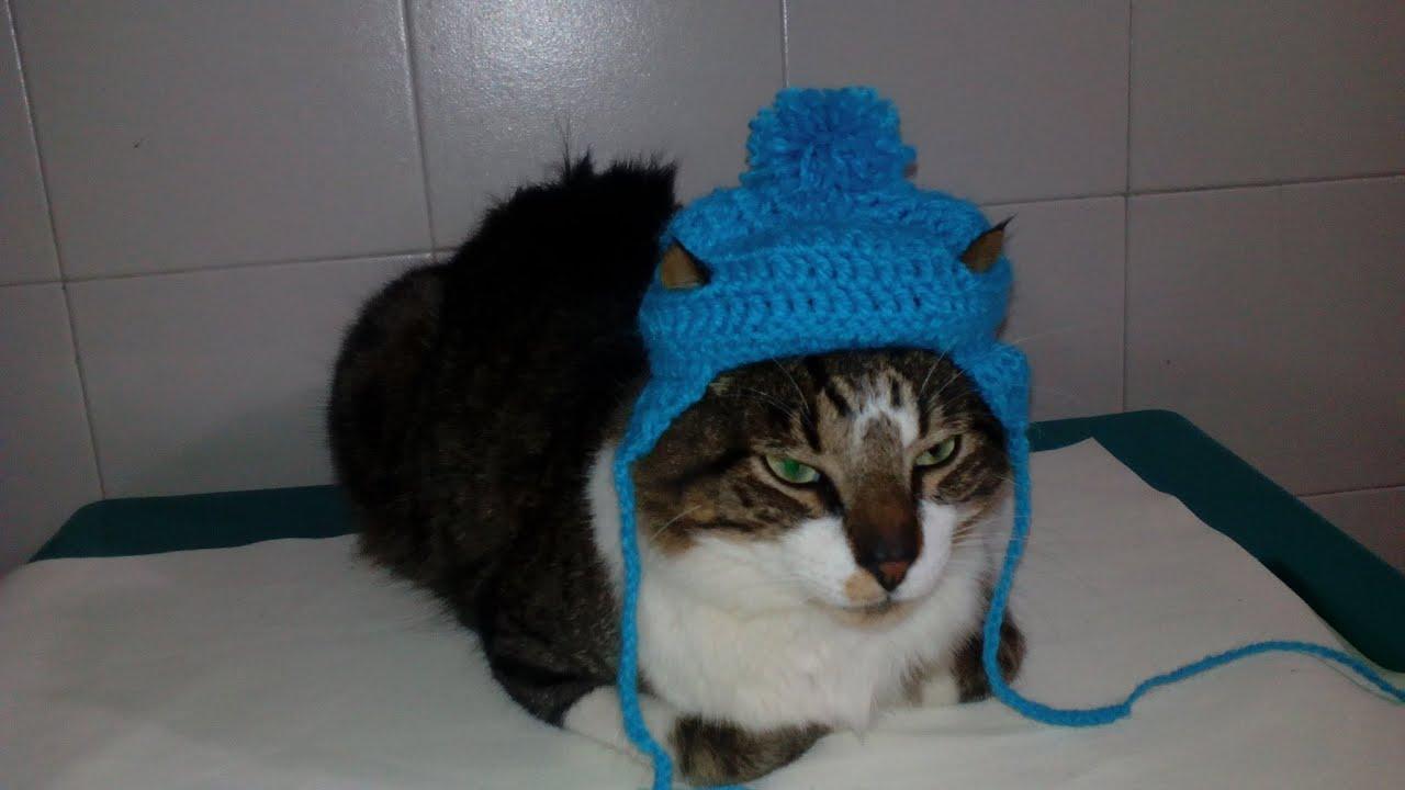 Gorro en Crochet Para Perro y Gato - YouTube