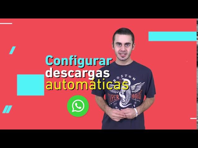 #CONECTATE: ¿WhatsApp te va a hacer explotar la memoria del teléfono?