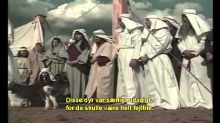 Yom Kippur genopførelse