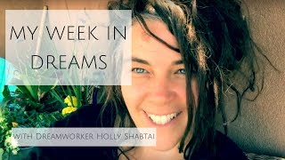 My Week In Dreams