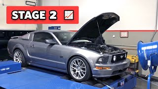Fully bolted Mustang puts down WHAT!? (Road to 700 - Stage 2)