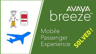 Airlines and Mobile Customer Experience
