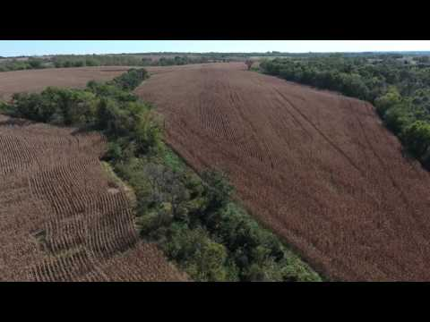 120 Acres, Nodaway County, MO (Bain)