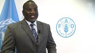 Remarks by Ousmane Badiane, Director for Africa, IFPRI
