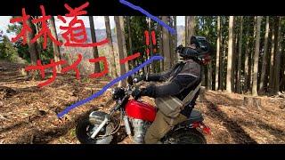 ミヨさんと林道に行ってきた動画です。 GoProの風切り音が気になるからティッシュでマイクをふさいだら、ぜんぜん音が入りませんでした。(汗)...