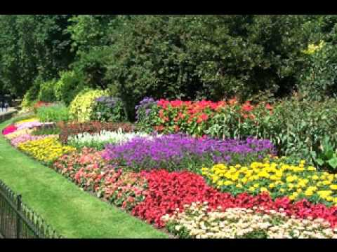 Diy small flower garden ideas youtube Small flower gardens