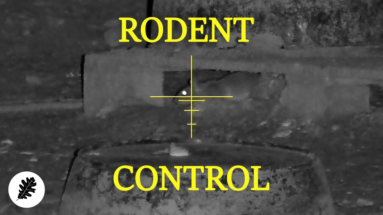 Nuisance Rodent Control... With Night Vision