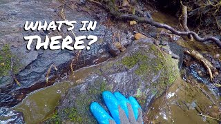 Finding GOLD after Historic FLOOD!
