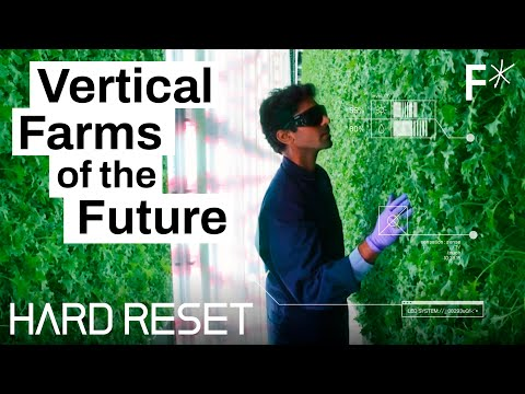 Vertical farms could take over the world | Hard Reset by Freethink