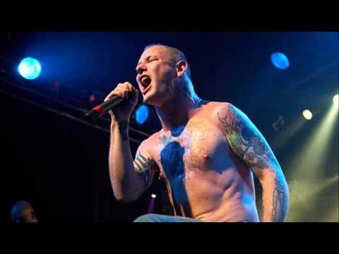 Stone sour house of gold and bones