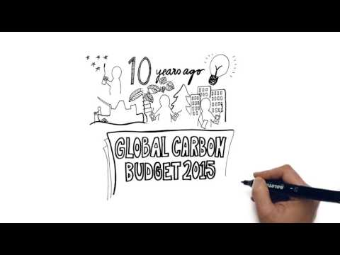 Video explainer What is the Global Carbon Budget