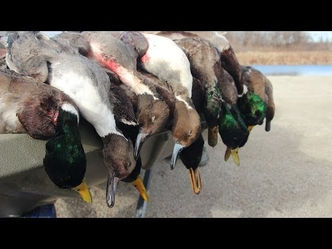 Duck Hunting Public Land: Stacked Against Us - Fowled Reality