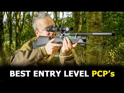 Top 5 Best PCP Air Rifles For Beginners - Best Entry Level PCP Air Rifles
