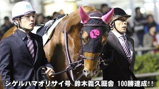 シゲルハマオリサイ号 鈴木義久厩舎 100勝達成 2015年12月16日 川崎競馬...