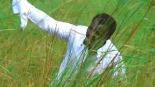 Ngoma ya siona (Mission du Cèdre au Congo)