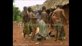 Lost In The Jungle: The Mbuti Pygmies In The Eastern Democratic Republic Of Congo